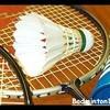 badminton84