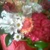 fleursdeprairies