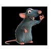 Ado-RAT-bles-en-Folie