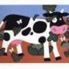 la-vache-lolll