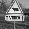 vouch-boy