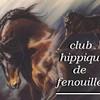 clubhippiquefenouillet