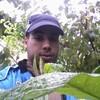 adillahlahli2010