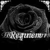 la-rose-noir38