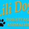 lili-dog