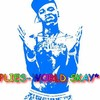 Plies-World
