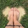 blueflowersongs