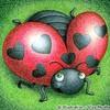 cosy-love