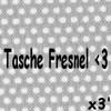 poons-dla-tasche-fresnel