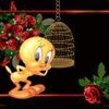 romance95