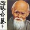 aikido-nader