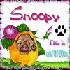 Snoopy9112005