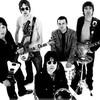 x---Oasis---x