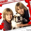 fanof-thesprouse