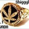shiggylee01