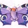 Deux-petits-papillons