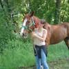 chevauxcavalier