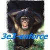 3e3-enforce