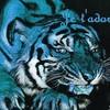 Passion-Tigre-flo-felins