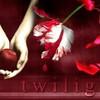 twilight-Knitting-Swap
