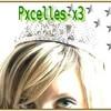 Pxcelles-x3