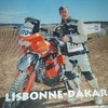 Le-tadorne-du-Dakar