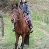 Miss-poney44