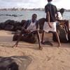 negrosena