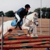 love-cheval31