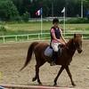 lealovehorses