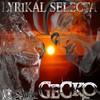 gecko-musik