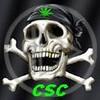 csc100