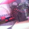 chiatikedu42300