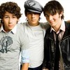 Jonas-Brothers--fan