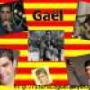 Viva-Gael