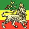 africandream242