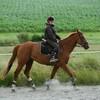 chevalkiss