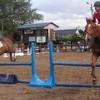 caballo-a-agon