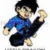 jetlee-karate