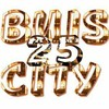 25700-buis-city