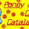 poneyclubcatalan