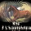 Hippo-Non-Stop