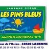 les-pins-bleus
