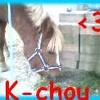 K-chOu-team
