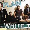 plain-white-ts