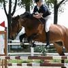 the-horsegirl