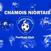 chamois-news