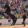 xx-Magie-Equestre65-xx