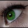 SilverWingsAngel