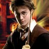 mehdipotter